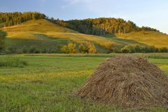 Haystack in the field Royalty Free Stock Photos