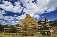 Haystack in the field Stock Images