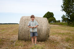 Haystack on the field Stock Photos