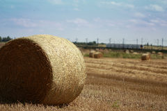 Haystack in a field Royalty Free Stock Photos