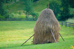 Haystack on a field Royalty Free Stock Photo