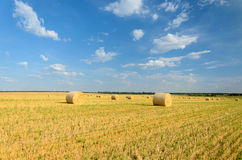 Haystack in the field Stock Photo