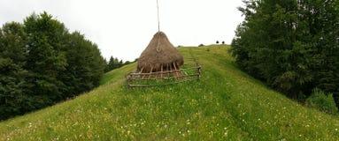 Haystack in field, Moieciu, Romania stock photo