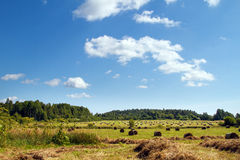 Haystack in the field. Panoramic. Haystacks in the field. Coil of hay.  Panorama. The rural landscape. Autumn, harvest. Mowed hay. Farmland. Mowed grass. Clouds Royalty Free Stock Photos