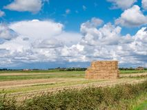 Haystack on field in polder near Oudeschild on West Frisian Island Texel, Netherlands. Stacked hay bales on farmland in polder near Oudeschild on West Frisian stock image