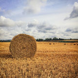 Haystack in the field Royalty Free Stock Photo