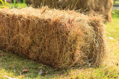 Haystack in field Royalty Free Stock Photos
