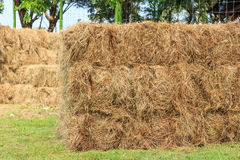 Haystack in field Royalty Free Stock Photography