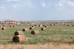 Haystack in the field, summer day Royalty Free Stock Photo