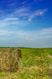 Haystack in field Royalty Free Stock Photos