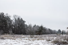 Haystack on the field during the winter. Winter sadness. Royalty Free Stock Photo