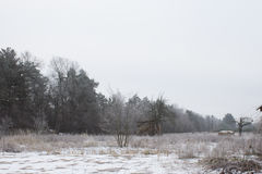 Haystack on the field during the winter. Winter sadness. Royalty Free Stock Images