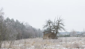 Haystack on the field during the winter. Winter sadness. Stock Images