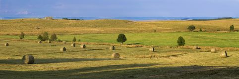 Haystack in the fields. NHaystacks in the fields of Aubrac - Lozere - France- in summer with a blue sky stock image