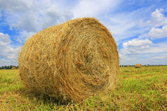 Haystack on the filed Royalty Free Stock Photography