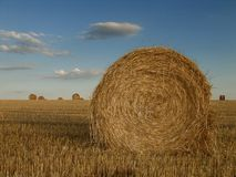 Haystack france. Haystacks on a french field Royalty Free Stock Image
