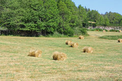 Haystack in french countryside. In summer stock image