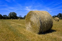 Haystack Freshly Cut Royalty Free Stock Photography