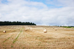 Haystack Stock Images