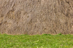 Haystack and grass background Stock Images