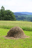 Haystack on the grass field and rural landscape Stock Photos