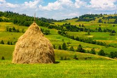 Haystack on the grassy field. Beautiful summer countryside of mountainous area Royalty Free Stock Image