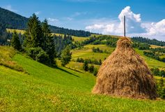 Haystack on a grassy hill on a summer day. Beautiful scenery in Carpathian Royalty Free Stock Photo