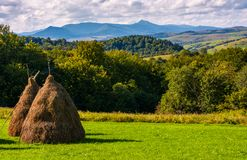 Haystack on grassy lawn on hillside. Haystack on gcountrysiderassy lawn on hillside. ecology agricultural concept. Location near Pikui mountain, Transcarpathian Stock Photo