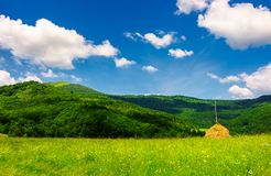 Haystack on a grassy pasture in mountains. Beautiful summer scenery on a fine weather day royalty free stock photo