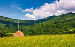 Haystack on a grassy pasture in mountains. Beautiful summer scenery on a fine weather day Stock Photography