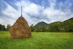 Haystack On Green Field Royalty Free Stock Photos