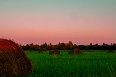 Haystack in the green field at sunset Stock Photo