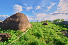 Haystack on a green grass Royalty Free Stock Photos