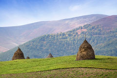 Haystack on green meadow, mountains on background Stock Photo