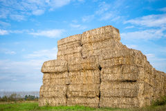 Haystack after the harvest Stock Photography