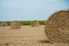 Haystack or hayrick Royalty Free Stock Photos