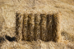 Haystack. S in the field autumn Stock Image