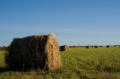 Haystack on the meadow. In sunny day Stock Images