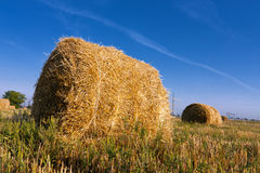 Haystack on meadow Royalty Free Stock Photography