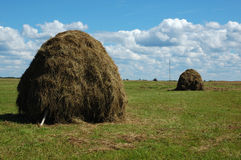 Haystack on the meadow Stock Photos