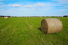 A haystack - Monkash, Wales Stock Image