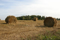 Haystack na polu Zdjęcie Royalty Free