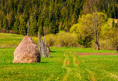 Haystack near forest on hillside. Agricultural field in mountain area. beautiful countryside landscape Stock Photography