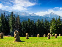 Haystack near forest on a meadow in Tatras Stock Photos