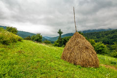 Haystack near orchard on hillside. Agricultural field in mountain area. beautiful countryside landscape on overcast day Royalty Free Stock Image