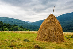 Haystack near orchard on hillside. Agricultural field in mountain area. beautiful countryside landscape on overcast day Stock Photography