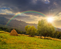 Haystack near trees on hillside meadow  in mountains at sunset Stock Photo