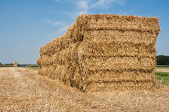 Haystack in the Netherlands. Huge haystack at the countryside of the Netherlands stock photography