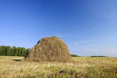 Haystack On The Meadow Stock Photo