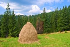 Haystack on a pasture Stock Photography